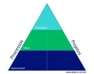 Como Situar O Gerenciamento Por Projetos Na Governança Organizacional